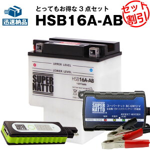 バイクでスマホ充電 USBチャージャー+充電器+HSB16A-AB セット■バイクバッテリー■HYB16A-ABに互換 スーパーナット充電器(12V) 送料無料/在庫有り・即納【新品】
