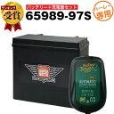 【お得な2点セット】バッテリーテンダー800 充電器+AGMバッテリー 65989-97S セット■バイクバッテリー■65989-97A 6…