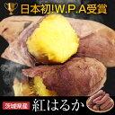 さつまいも 蜜芋 5kg 訳あり【日本初のW.P.A受賞の究極のさつまいも】 B品 紅はるか 焼き芋にも最適 スイーツのような甘み プチギフト
