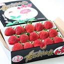 いちご スイーツ キングベリー (15個~12粒入)×1パック プチギフト 大粒 苺 ストロベリー プチギフト 高級
