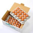卵 世界大会受賞 たまご 30個入り 生卵 赤玉鶏の王者ボリスブラウンのたまご 卵焼き 玉子焼き 鍋 すき焼き チャーハン…