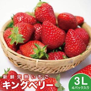 いちご イチゴ 苺 キングベリー 3L×4パック いちご ギフト 大粒 ストロベリー 贈答 新鮮 深作農園