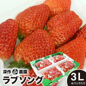いちご ギフト ラブソング 3L×4パック イチゴ 大粒 贈答 ストロベリー 新鮮 苺農家 深作農園