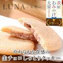 チョコレート 送料無料 生チョコしっとりクッキー LUNA(ルナ) 3種9個入り ギフト プチギフト お取り寄せ 女友達 女の子 女性 お母さん