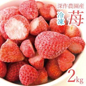 いちご 冷凍 タルトやアイスなどのスイーツ イチゴジャム 農家 直送 安心安全 国産 茨城県 鉾田市産 2kg(1kg×2袋)