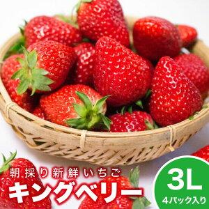 いちご イチゴ ギフト 贈答 キングベリー 3L×4パック プチギフト 大粒 苺 ストロベリー  スイーツ 新鮮 果汁 いちご農家 いちご狩りの深作農園