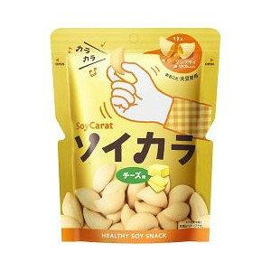【5個セット】 ソイカラ チーズ味 27g×5個セット 【正規品】 ※軽減税率対応品