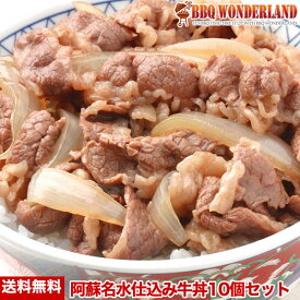 牛丼 牛丼の具 冷凍 食品 小分け セット 肉 阿蘇名水仕込みのつゆだく[牛丼]10個セット