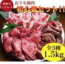 肉 福袋 焼肉 焼肉セット タン メガ盛り 2人 2人前 約 1kg 4人 から 5人 厚切り わけあり 訳あり パーティーセット カ…