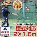 全品5%引クーポン 野球 練習 ネット 硬式 軟式 ソフトボール対応 2m×1.6m ターゲット付き 打撃 バッティング 硬式野…