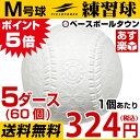 最大4000円引クーポン フィールドフォース 軟式練習球 M号 5ダース 60個 一般・中学生向け メジャー 練習用 ダース売り 新規格 新軟式球 草野球 軟式ボール FNB-7212M M球