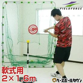 【あす楽】野球 練習 ネット 軟式M号・J号対応 2×1.6m ターゲット・固定用ペグ付き バッティング FBN-2016N2 フィールドフォース