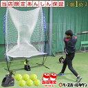 【あす楽】電池おまけ 6ヶ月保証付き 野球 練習 オートリターン・エボリューション 高さ調節可能 トスマシン+専用ネ…