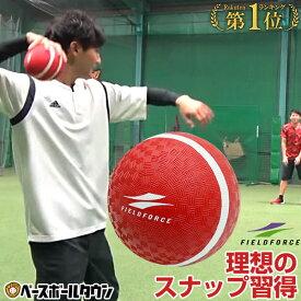 【2200円で送料無料】 野球 投球 送球 スローイングマスター ピッチング キャッチボール ケガ 怪我 リハビリ イップス FPG-5 フィールドフォース トレーニング