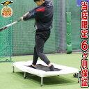 【年中無休】最大10%引クーポン 野球 バッター用トランポリン 打撃練習専用 一般・ジュニア兼用 6ヶ月保証付き 体幹 …