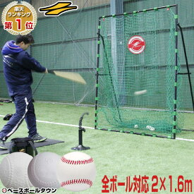 【あす楽】野球 練習 ネット 硬式 軟式M号・J号 ソフトボール 対応 2m×1.6m ターゲット付き 打撃 バッティング 硬式野球 軟式野球 FBN-2016H フィールドフォース トレーニング