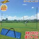 最大10%引クーポン 野球 練習 バックネット 軟式用 実打可能 7m×3m 収納バッグ付き 防球ネット 軟式M号・J号対応 打…