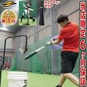 最大10%引クーポン スペアティー付き リニューアル!野球 練習 スウィングパートナー・バックスピン 硬式・軟式M号・…