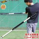 野球 練習 トレーニングバット 長尺&超軽量 110cm 実打可能 長尺バット 打撃 軟式M号・J号対応 バッティング ラッピ…