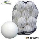 最大10%引クーポン 野球 練習 室内用バッティングボール 20個入り EVA素材 専用バッグ付き 打撃 バッティング FEV-20…