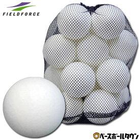 最大10%引クーポン 野球 練習 室内用バッティングボール 20個入り EVA素材 専用バッグ付き 打撃 バッティング FEV-20 フィールドフォース