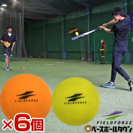 最大10%引クーポン 野球 練習 空気入れおまけ 軟式MまたはJ号サイズ 6個セット アイアンサンドボール 重さ約3倍 少年 ジュニア 子供 子ども FIMP-681J FIMP-721M フィールドフォース トレーニング
