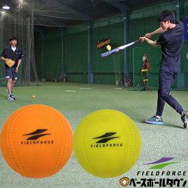 最大10%引クーポン 野球 練習 アイアンサンドボール 軟式M・J号サイズ 重さ約3倍 インパクトパワーボール少年 ジュニア 子供 子ども FIMP-681J FIMP-721M フィールドフォース トレーニング