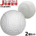 フィールドフォース J号練習球 2個売り 軟式野球ボール 小学生向け ジュニア 練習用 練習ボール J球 J号ボール 桜ボー…