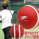送料無料 最大10%引クーポン 野球 投球 送球練習用ボール スローイングマスター ピッチング スナップ キャッチボール…