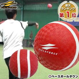 最大10%引クーポン 野球 投球 送球練習用ボール スローイングマスター ピッチング スナップ キャッチボール ケガ 怪我 リハビリ イップス FPG-5 フィールドフォース