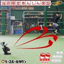最大10%引クーポン 6ヶ月保証付き 電池おまけ 野球 練習 簡易ピッチングマシン スライダー カーブ シュート ストレー…