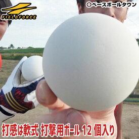 最大10%引クーポン 野球 練習 トス専用ボール 軟式 12個入り 打撃 バッティング トレーニング 軟式球 軟球 軟式ボール FTBB-12 フィールドフォース