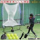 最大10%引クーポン アダプタープレゼント 6ヶ月保証付き 野球 練習 オートリターン・エボリューション 高さ調節可能 …