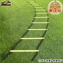野球 練習 トレーニングラダー 6m マニュアル付き スピードラダー 連結可能 トレーニング用品 サッカー フットサル バ…