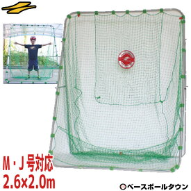 野球 練習 ネット 軟式M号・J号対応 2.6×2.0m ターゲット・固定用ペグ付き 打撃 バッティング FBN-2620N2 フィールドフォース ラッピング不可