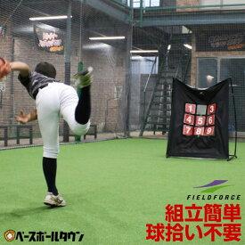野球 ターゲットコントロール 軟式M号・J号対応 投球 ピッチング FPN-1310P フィールドフォース トレーニング