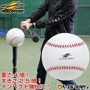 最大10%引クーポン 野球 練習 インパクトマッスルボール 直径18cm 重量約520g FIMB-7 フィールドフォース トレーニング