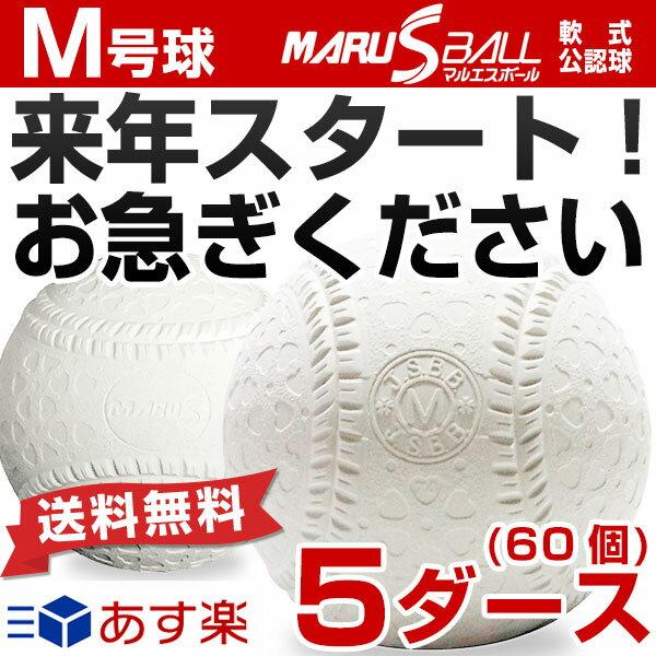 最大12%引クーポン 23%OFF ダイワマルエス 軟式野球ボール M号 お得な5ダース売り(60個) 一般・中学生向け メジャー 検定球 ダース売り 新公認球 あす楽 クリスマスプレゼントに