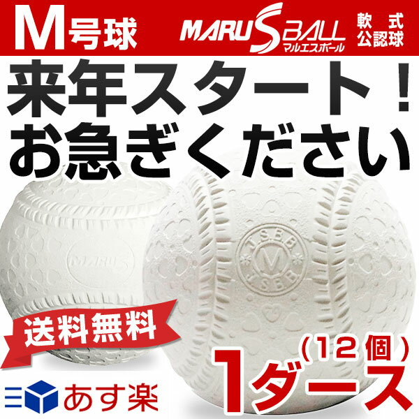最大12%引クーポン 25%OFF ダイワマルエス 軟式野球ボール M号 一般・中学生向け メジャー 検定球 ダース売り 新公認球 あす楽 クリスマスプレゼントに