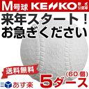 最大5000円引クーポン お得な5ダース売り(60個) ナガセケンコー 軟式野球ボール M号 一般・中学生向け メジャー 検定…