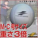 最大4000円引クーポン 野球 練習 アイアンサンドボール 軟式A・C号サイズ 重さ約3倍 インパクトパワーボール 打撃 バッティング 少年 ジュニア 子供 子ども FIMP-680 FIMP-720
