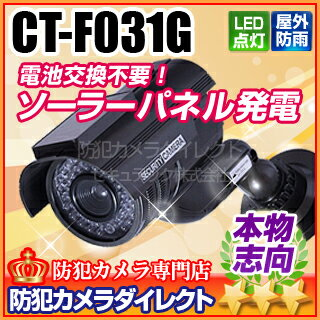 【ダミー防犯カメラ・監視カメラ】【CT-F031G】屋内外OK 電源不要 ソーラー発電 充電池付きダミーカメラ【RCP】