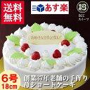 バースデーケーキ 誕生日ケーキ 6号 プレート付 木苺 生クリーム / 18cm 送料無料 あす楽 誕生日 フルーツケーキ 送料…