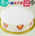 ホワイトデー ノーマル 大阪ヨーグルトケーキ 5号 /15cm 【このケーキは名入れできません名入れ希望は他のケーキをお選び下さい】 フルーツケーキ 大阪 ご当地スイーツ 名物 あす楽 ケーキ プレゼント スイーツ 即日発送 ホール ギフト お菓子