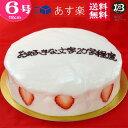 バースデーケーキ 誕生日ケーキ 6号 名入れ 大阪 ヨーグルトケーキ/父の日 18cm フルーツケーキ 大阪 名物 送料無料 あす楽 誕生日 バ…