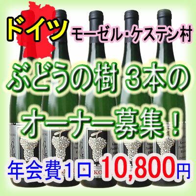 2018年度 ★ぶどうの樹3本のオーナー募集★ 2200020014515【07001】【YDKG-f】【wineday】【送料無料】