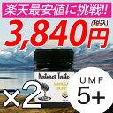 マヌカハニー UMF5+ MGO83 相当 250g 2個セット ハニーバレー スーパーフード 送料別 ニュージーランド産 マヌカハニ…