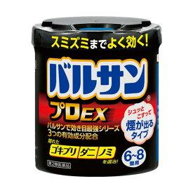 バルサン プロEX 20g 【第2類医薬品】