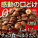 半年に一度の大増量1kg→1.2kg!シュガーレスチョコが1200粒以上!【そのまんまディアチョコレート】シュガーレスチョ…