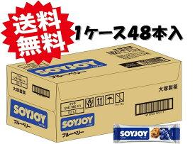 大塚製薬 ソイジョイ ブルーベリー 30g×48本